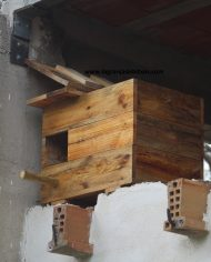 caja_lechuzas_3